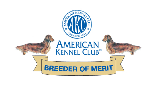 breeder of merit - American Kennel Club