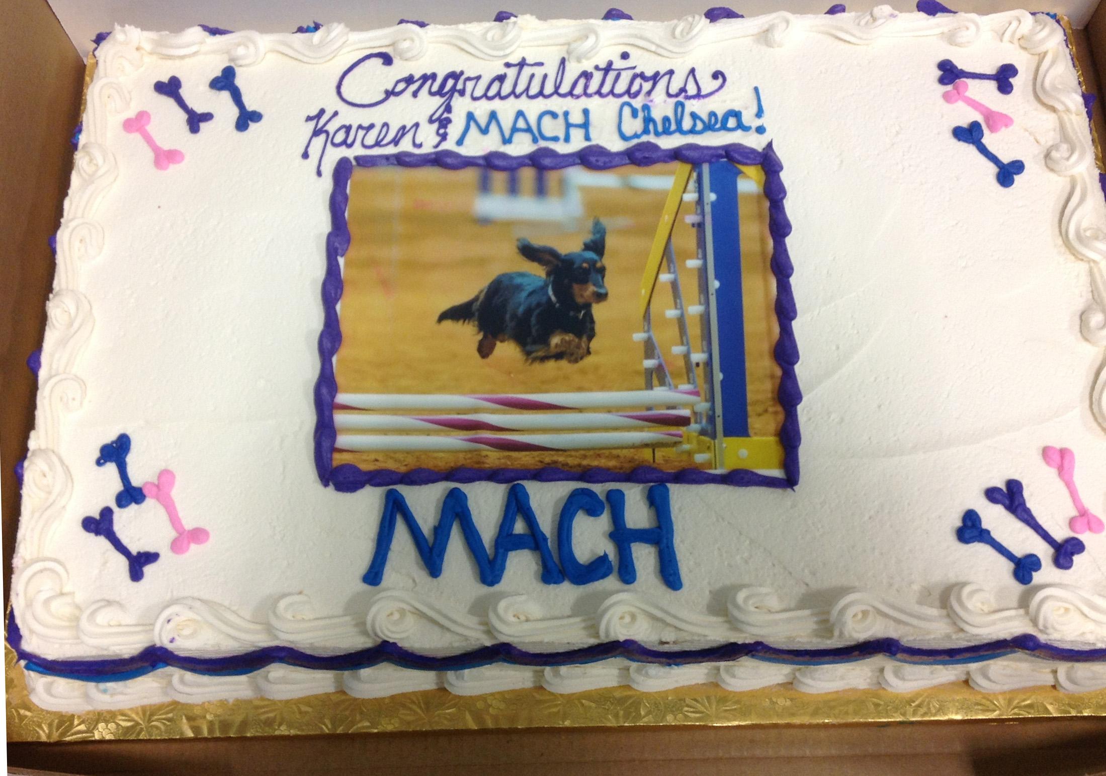 MACH CAKE